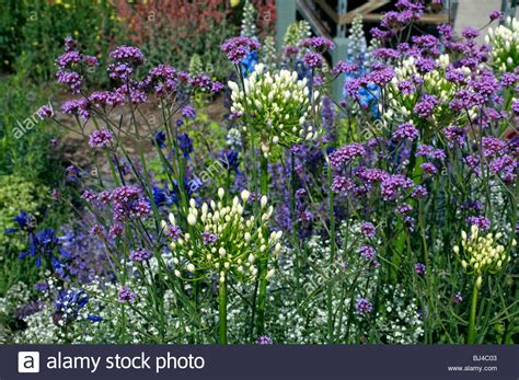 a colourful herbaceous flower border in a country