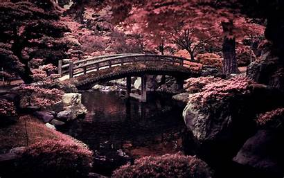 Japan Nature 4k Windows Mac Backgrounds Definition