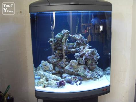 aquarium marin 130l nord pas de calais