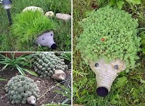 Pinterest Bricolage Jardin : fabriquer un herisson en plante jardin plantations ~ Melissatoandfro.com Idées de Décoration