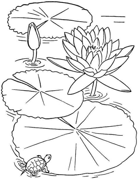 Free Colouring Sheets Lotus Flowers For Kids # | Flower coloring pages, Lily pad drawing