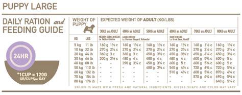 orijen large breed dry puppy food