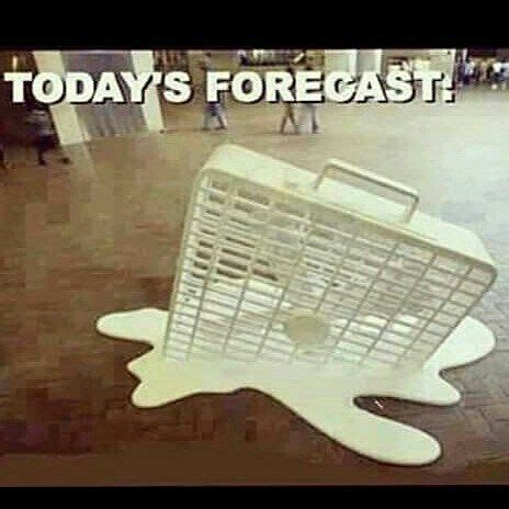 Hot Day Meme - 11 best images about hot weather humor on pinterest jokes arizona and summer
