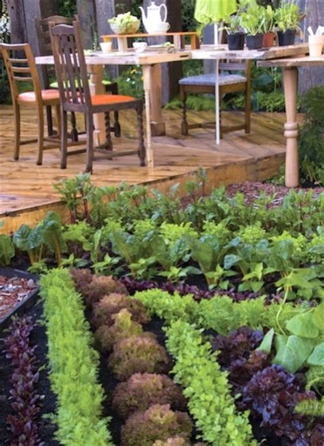 edible landscaping design edible landscaping tips for beginners interior design inspiration