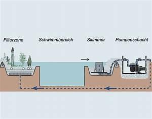Eisenfilter Brunnenwasser Selber Bauen : filtertechnik beim schwimmteich flury emch gartenbau ~ Frokenaadalensverden.com Haus und Dekorationen