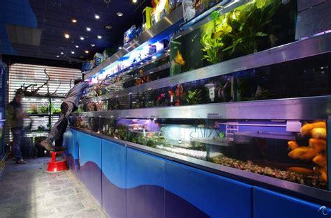 aquarium supplies livestock aquatic design centre ltd