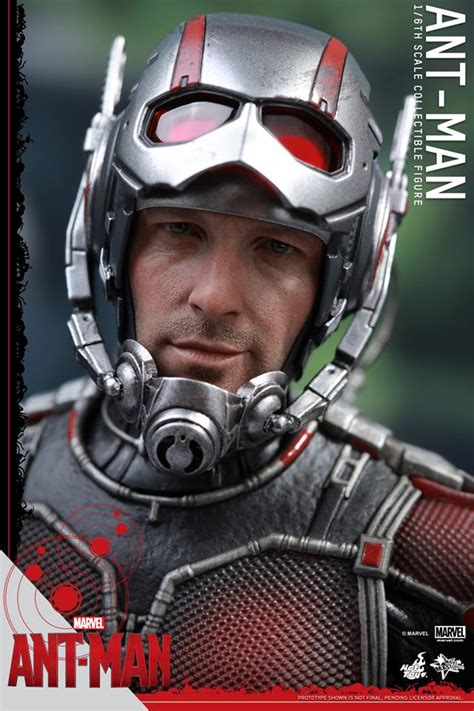 hot toy ant man unmasked head sculpt  toyark news