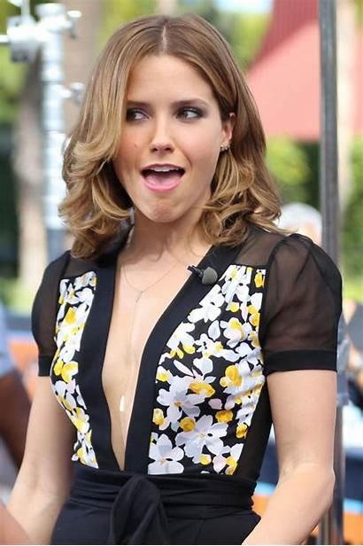 Bush Sophia Wilson Sheree Extra Celebrity Universal