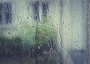 Wasserschaden Mietwohnung Mietminderung : wasserschaden in der mietwohnung wichtige infos ~ Orissabook.com Haus und Dekorationen