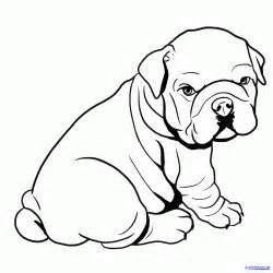 English Bulldog Puppies Drawings