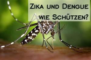 Tigermücke Stich Symptome : bist du vor der tigerm cke dengue u zika virus gesch tzt ~ Frokenaadalensverden.com Haus und Dekorationen
