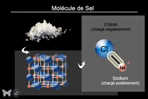 intra science pourquoi le sel se dissout il dans l eau