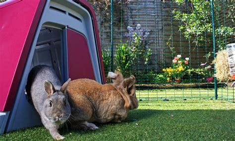 omlet rabbit hutch outdoor rabbit run rabbit products omlet