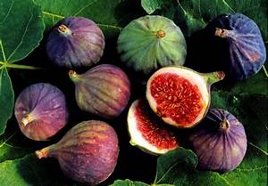 How to Select, Store and Cook Figs!