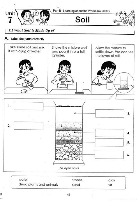 science worksheets for year 3 3rd grade science