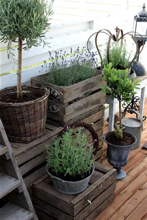 Home Grown Container Herbs