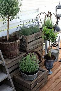 potted herb garden Home Grown Container Herbs | Simpsons Garden Centre