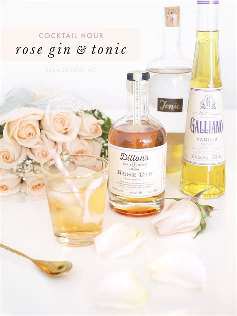 gin and tonic recipe cocktail hour dillon s rose gin tonic sara du jour