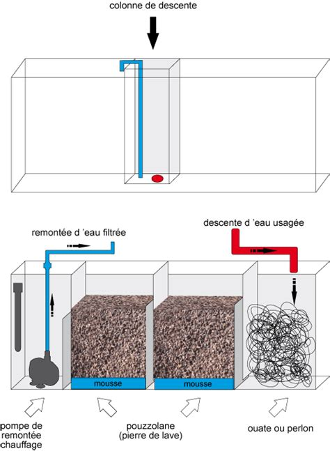 aquarium eau douce filtration