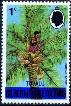Tuvalu That Sinking Feeling by 1000 Images About Tuvalu On Pinterest Tuvalu Island