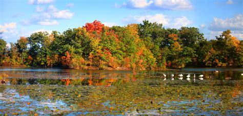 Idyllic Autumnal Scenery Lake Sylvenstein Germany Stock Image Image Of Reflection Glow