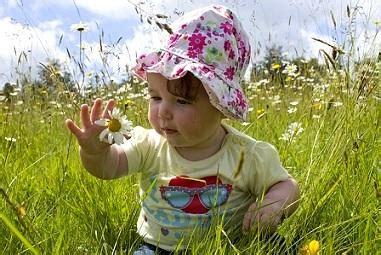 Pilze Im Garten Giftig Für Kinder by Giftige Pflanzen F 252 R Babys Und Kleinkinder Markt De