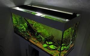 Aquarium Led Beleuchtung : aquarium led beleuchtung selber bauen schullebernd 39 s technikwelt ~ Frokenaadalensverden.com Haus und Dekorationen