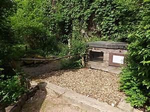 Tierpark Dessau Preise : insektengehege tierpark dessau der beutelwolf blog ~ Yasmunasinghe.com Haus und Dekorationen