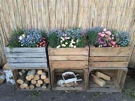 bohnen anbauen anleitung bohnen pflanzen anleitung zum anbauen bohnen freephotoroom ml