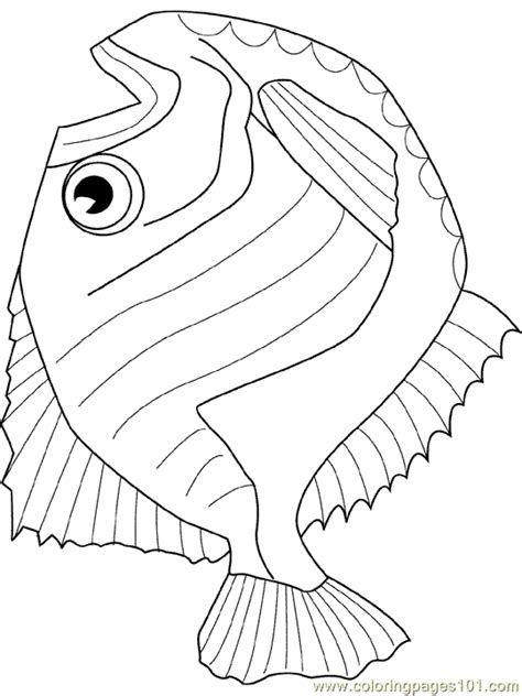 hatchet fish coloring page   fish coloring