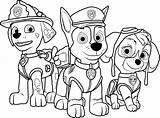 Paw Patrol Coloring Play Cartoon sketch template