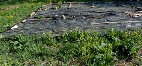 Bache De Sol Pour Jardin Toile Horticole