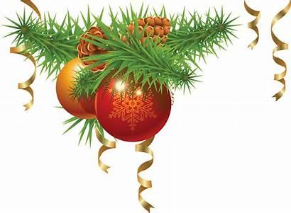 Christmas Tree Fir Decoration Icon Pngimg