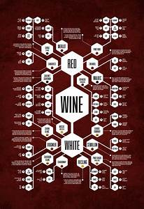 The Wine Diagram Thoroughly Records The Perplexing World Of Wine