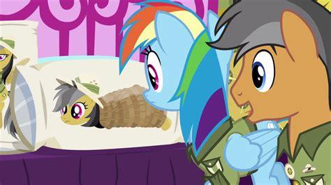 bronies  preparing    pony friendship