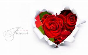 Red Roses In A Heart Shape Wallpapers - 1920x1200 - 305216