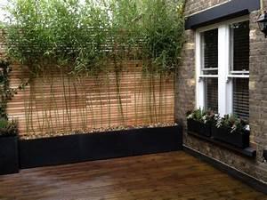 les 25 meilleures idees de la categorie haie bambou sur With brise vue avec jardiniere 11 plantes de jardin le bambou fascinant et polyvalent