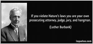 If you violate Nature's laws you are your own prosecuting ...