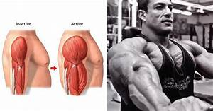 The 4 Exercises To Get Huge Arms Fast
