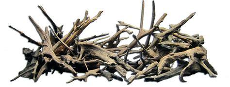 Driftwood Aquascape by Driftwood Aqua Rebell