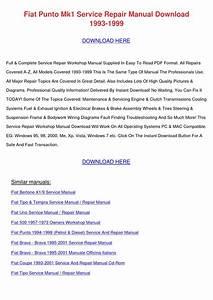 Fiat Punto Mk1 Service Repair Manual Download By