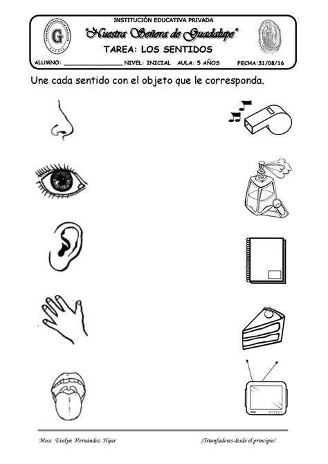 Tarea los sentidos by evelynabejitas Issuu