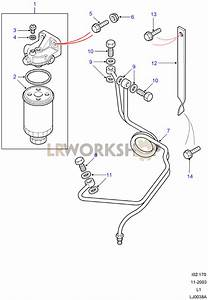 Fuel Filter  U0026 Pipes - 300tdi