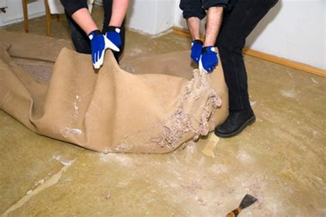 Pvc Boden Kleber Entfernen by Teppichboden Entfernen Teppichkleber Entfernen