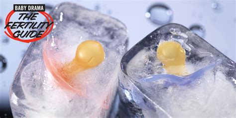 frozen eggs freezing your eggs pros and cons how to freeze your eggs