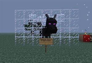 Minecraft Mods Hatch The Ender Dragon Egg Ride | Auto ...