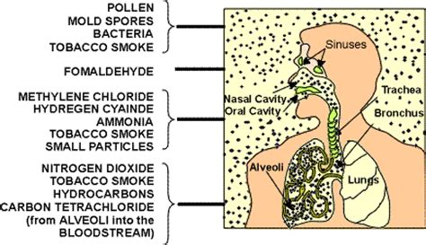 infographics  picture gallery related  indoor air