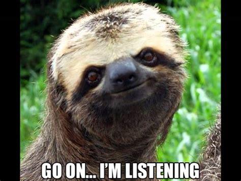 Angry Sloth Meme - image gallery evil sloth