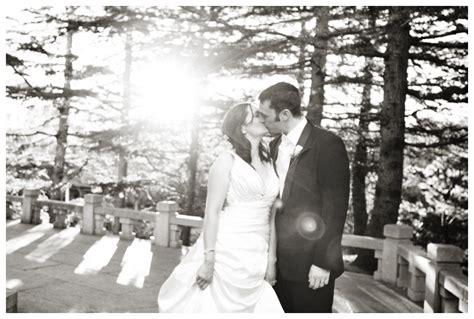 testimonials sydney wedding photographer newborn baby