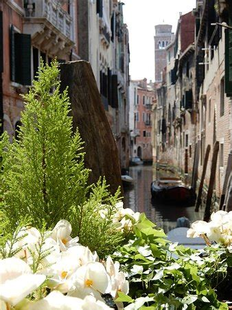 osteria da fiore venezia osteria da fiore venezia san polo ristorante